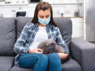 Kranke Katze auf Schoß einer Frau
