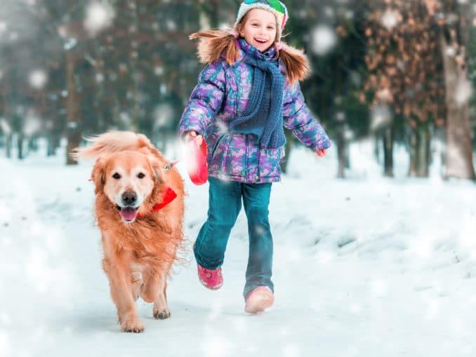 Damit der Hund gut durch den Winter kommt