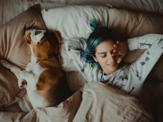 Hund mit einer Frau im Bett